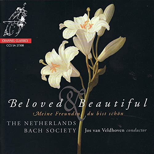 Beloved & Beautiful - The Netherlands Bach Society Performs Böhm, J.C. Bach, Schütz, & J.S. Bach
