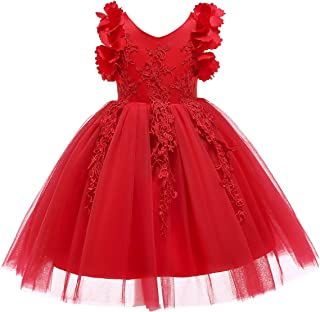 Weileenice 1-12T Big/Little Girl Flower Lace Christmas Dresses Bowknot Birthday Tulle Dress for Communion Party Wedding