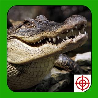 Crocodile Hunter 2014