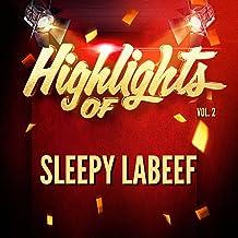 Highlights of Sleepy LaBeef, Vol. 2