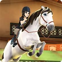 star 4 equestrian