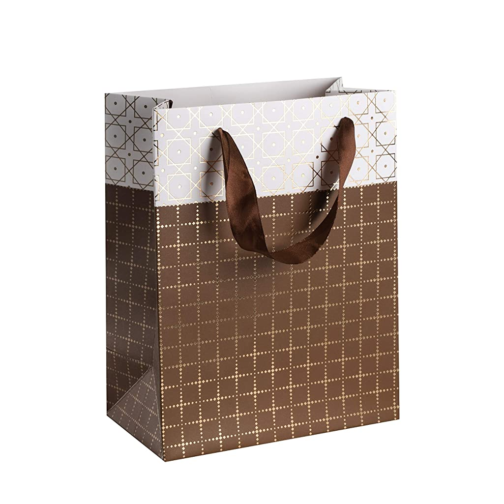 "Small Box Design Foil Stamped Gift Bags Set (12 Pack)- 9""x 7""x 4"" Unique Design with Durable Ribbon Handles, Beautiful Present Bags Best for Birthday, Wedding and Party Favors (Brown)"