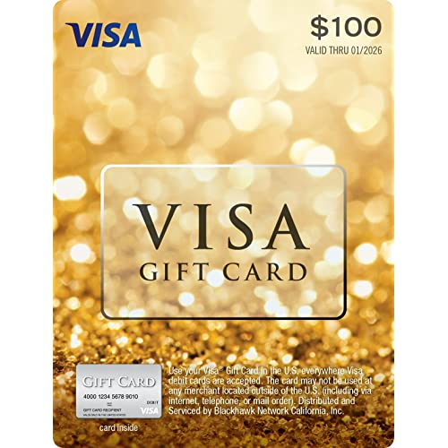 100 Visa Gift Card Plus 595 Purchase Fee