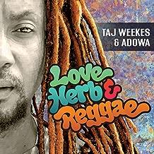 Love Herb & Reggae