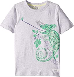 Ray T-Shirt (Toddler/Little Kids/Big Kids)