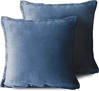 Edow Velvet Throw Pillows (Set of 2), Soft Fluffy Down Alternative Polyester Stuffing Decorative Pillows for Home Decor, Sofa, Couch, Bed, Office and Car. (Light Blue, 18x18)