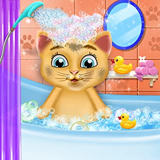 Cute Kitten Daycare & Beauty Salon - Enjoy your day grooming and playing with your pets!