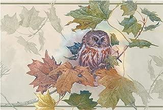owl border wallpaper