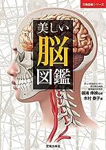 表紙: 美しい脳図鑑 (万物図鑑シリーズ) | 木村泰子