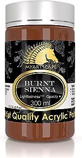 Acrylic Paint - 300ml (10oz) - Heavy Body - Lightfast - Artist Quality - MyArtscape (Burnt Sienna)