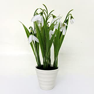 FloristryWarehouse Artificial Snowdrops in a White Ceramic Pot 9 Inches Spring Flowers
