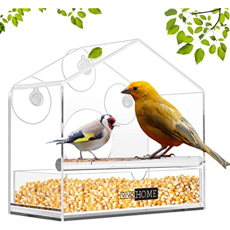 Window Glass Bird Feeder Clear Perspex Seed Peanut Suction Cup Plastic New