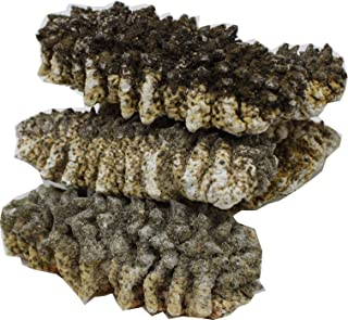 DABC OAK LAND SA 122# 8OZ=227g/Bag Sea Cucumber,Wild Caught Sun Dried South American Sea Cucumber,A Grade All Natural Nutritious,High Soaked Rate with 8 Times,南美海域长刺海参8倍高泡发 7~12pcs/8OZ, SA 122# Bag