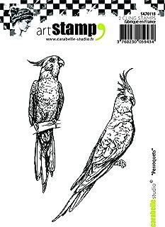 Carabelle Studio SA70118 A7 Cling Stamp - Perroquets (Parrots)