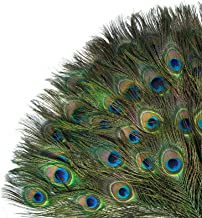 Acerich Peacock Feathers 35 PCS, 10-12 Inches Animal Birds Craft Feathers with Big Peacock Eye for Crafts, Dreamcatcher Ma...