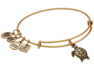 Alex and Ani Turtle (Rafaelian Gold) Bracelet