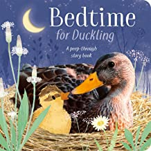 Bedtime for Duckling: A peek-through storybook