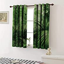 shenglv Rainforest Window Curtain Fabric Palm Trees and Exotic Plants in Tropical Jungle Wild Nature Zen Theme Illustration Curtains and Drapes for Living Room W55 x L63 Inch Green