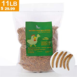 Euchirus 11 lbs Non-GMO Dried Mealworms for Wild Bird Chicken Fish,High-Protein,Lrage Meal Worms.