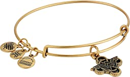 Alex and Ani - Wonder Woman Lasso Knot Bangle