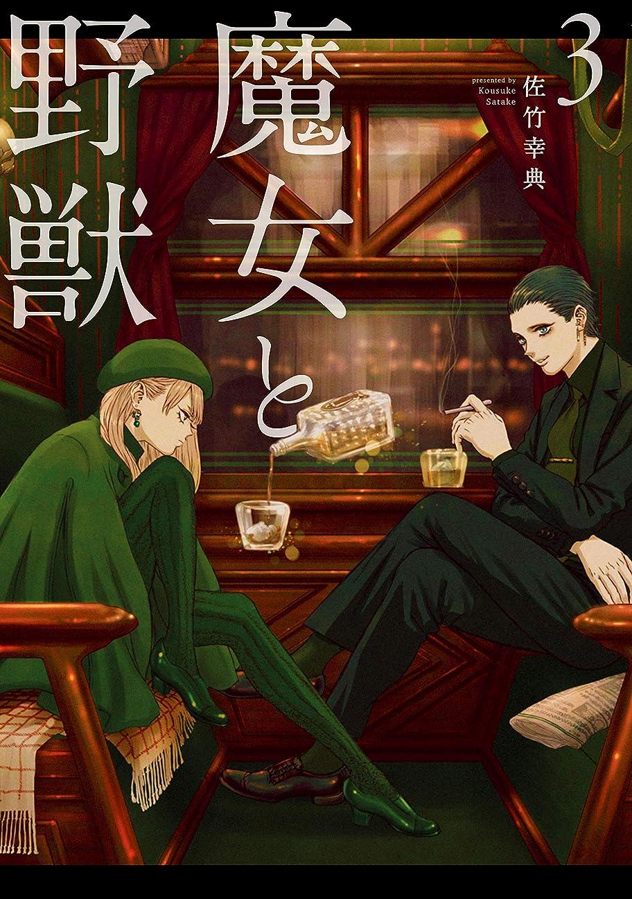 全体モノグラフ軍魔女と野獣(3) (ヤングマガジンコミックス)