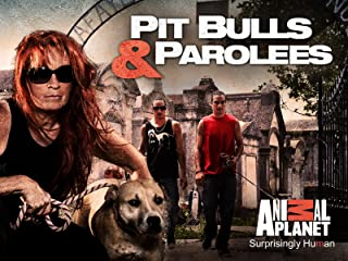 Best pitbulls and parolees store Reviews