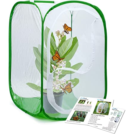Trasfit Butterfly Net Kit 12 Ring Scaleable Net Handle Extends to 59 Inches for Adults /& Kids Pop-up 16 x 24 Inches Habitat Cage