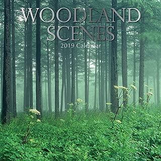 Woodland Scenes 2019 Calendar