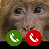 Fake call from Ape Monkey