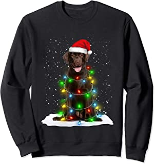 Best black lab christmas sweater Reviews