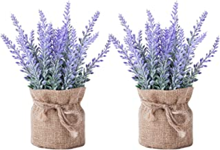 YAPASPT 2 Pack Small Burlap Potted Lavender Flowers - Artificial Plants and Flocked Charming Purple for Warm and Loving Ta...