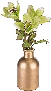 Best antique brass flower vase Reviews