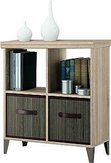 Estanteria de salon 4 espacios Talos, con dos cestos, estante de pie, de melamina