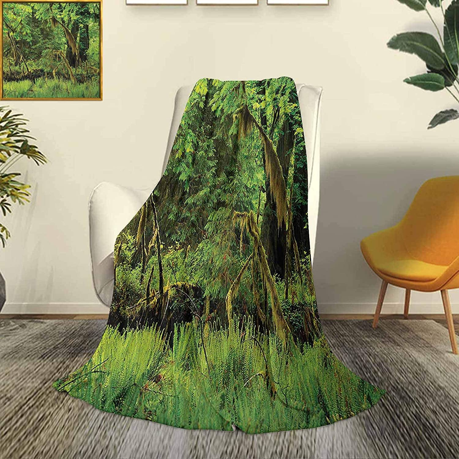 Rainforest Super Soft Cheap SALE Start and Comfortable Microfiber Blan Luxury Bed Cheap mail order shopping