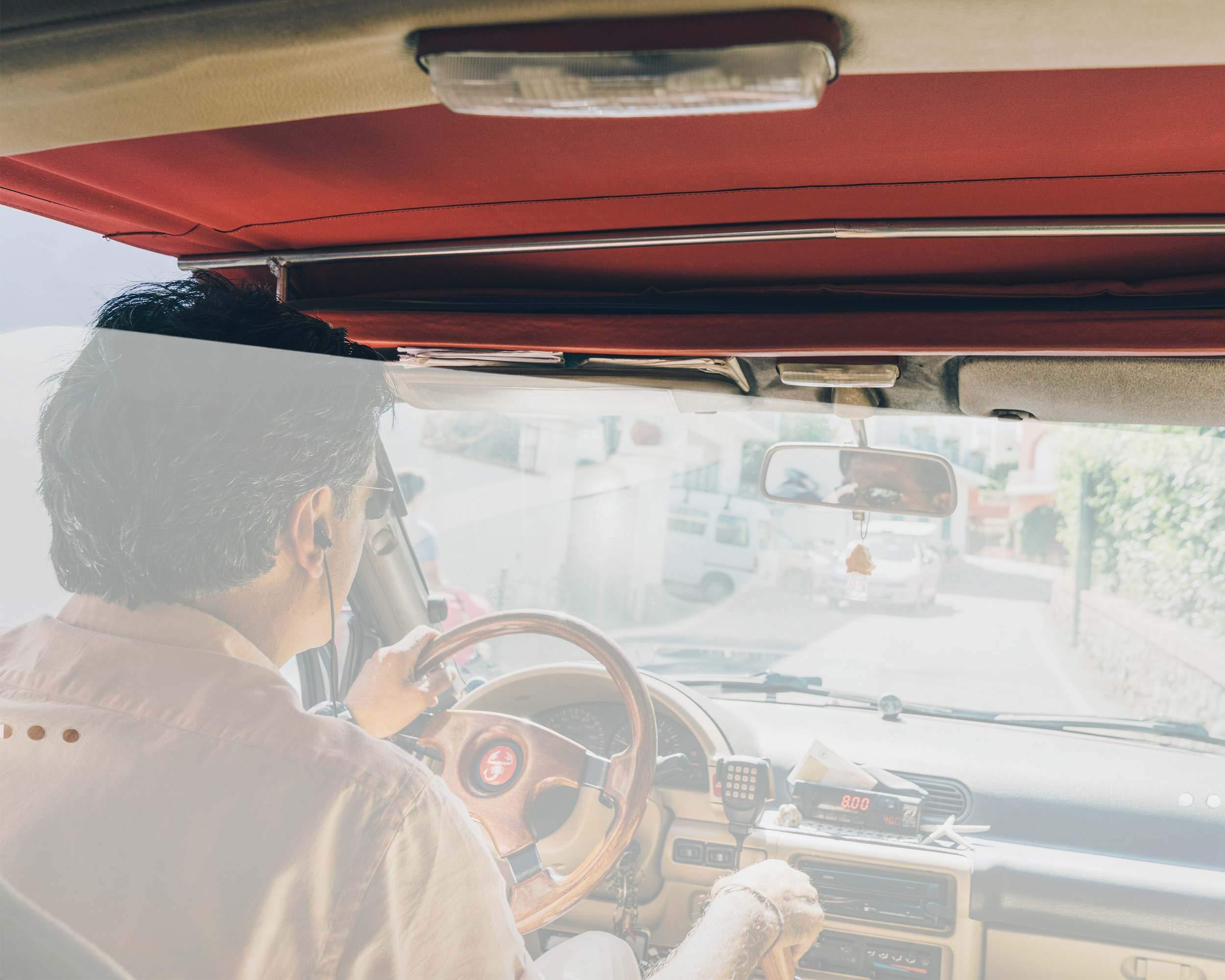 Olmedo Servicios Integrales Pantalla Separadora de Asientos para Coche Transparente 98x48 cm - Universal para Coches y Furgonetas - Barrera Separadora Entre Asientos - Valla Divisoria para Ocupantes: Amazon.es: Productos para mascotas