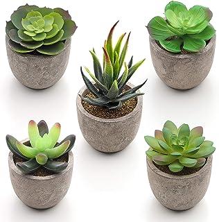 SONGMICS Plantas Suculentas Artificiales en Maceta, 5 Piezas, Plantas Decorativas, Plantas de Casa Falsas para Sala, Ofici...