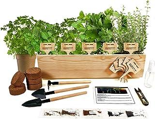 Hand-Mart 5 Herb Seeds Window Garden Starter Kit, Basil Parsley Rosemary Thyme Mint, Including Everything-Soil, Pots, 3 Ga...