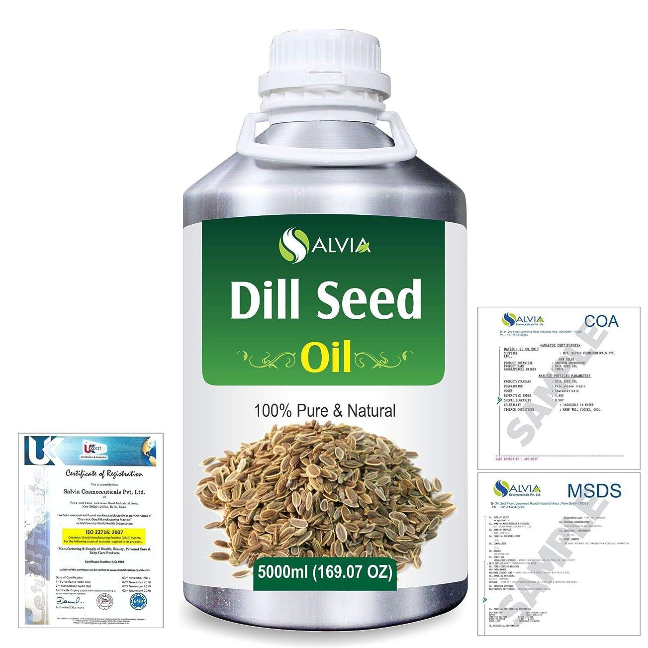 コジオスコエラー崩壊Dill Seed (Anethum graveolens) 100% Natural Pure Essential Oil 5000ml/169fl.oz.