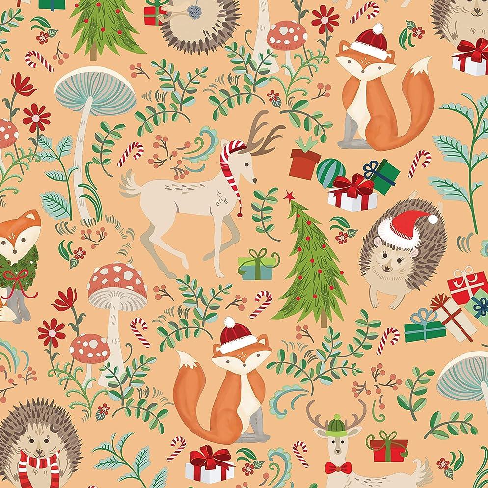 Jillson Roberts XR766.1 Christmas Gift Wrap Rolls, red/Green/Multi 6 Piece