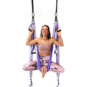 YOGABODY Yoga Trapeze Pro – Yoga Inversion Swing with Free Video Series and Pose Chart, Purple