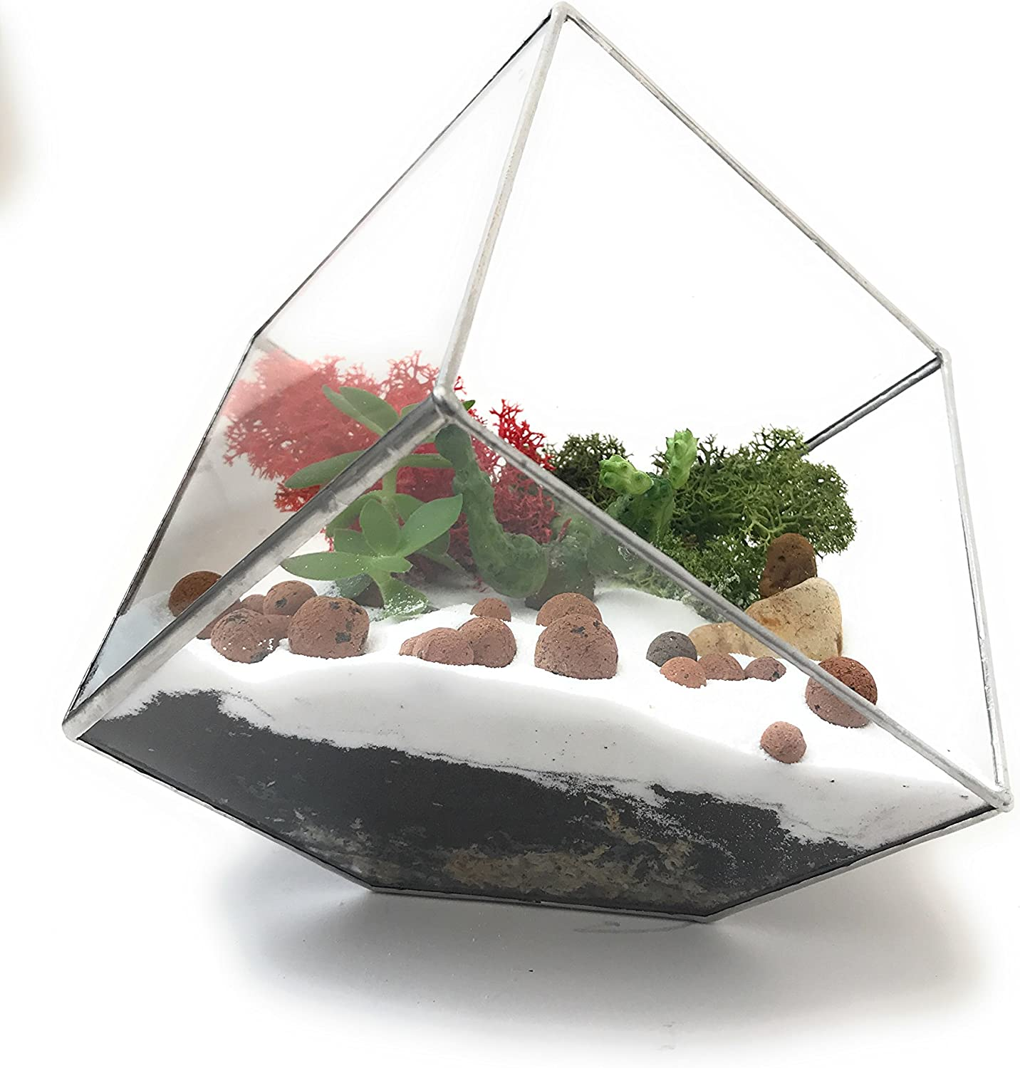 Christmas Premium Terrarium Kit with Beautiful Reindeer Moss Limited Collection Packed and Made in England (Terrarium Kit with Terrarium)