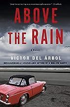 Above the Rain: A Novel