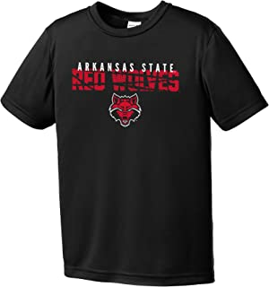 NCAA Arkansas State Indians Youth Boys Destroyed Short sleeve Polyester Competitor T-Shirt, Youth Large,Black