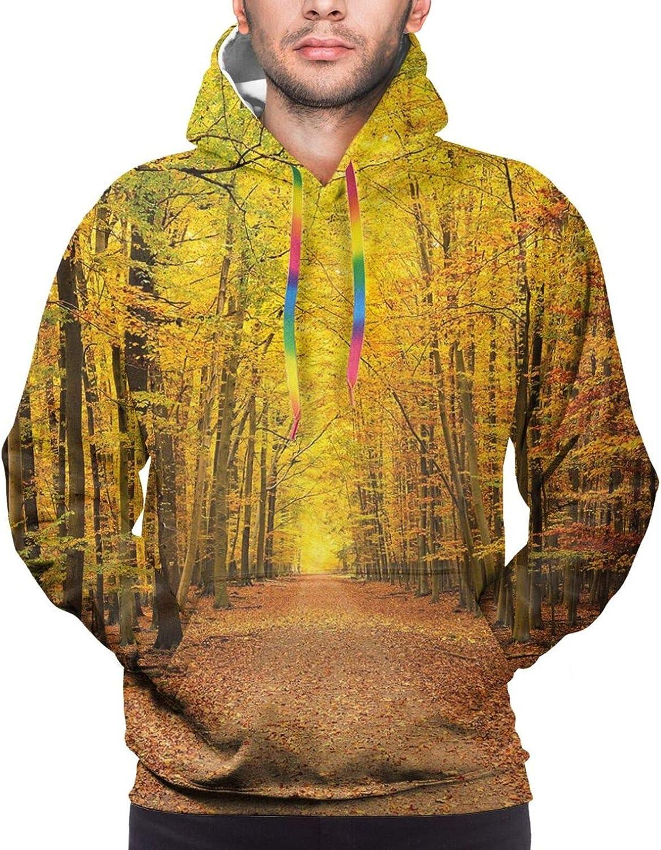 Men's Hoodies Sweatshirts,Seasonal Nature Blooms Colorful Garden Art Illustration Ornamental Swirls Background