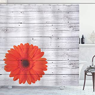 Ambesonne Vintage Home Decor Shower Curtain Set, Hot Red Daisy Flowers on Rustic Wood Wall Design Picture Garden Gerbera Plant, Bathroom Accessories, Polyester Fabric, 75 Inches Long, Light Grey Red