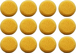 Pack of 12 Tack Sponges