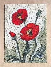MOSAIC ART KIT DIY WILDFLOWERS POPPIES 9