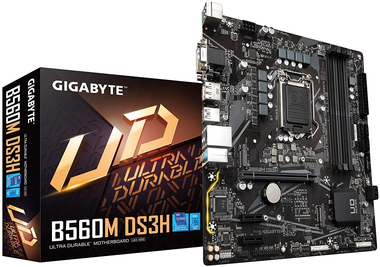 Amazon.com: GIGABYTE B560M DS3H (LGA 1200/ Intel/ B560/ Micro-ATX/Dual M.2/  PCIe 4.0/ USB 3.2 Gen1/ GbE LAN/Motherboard): Computers & Accessories