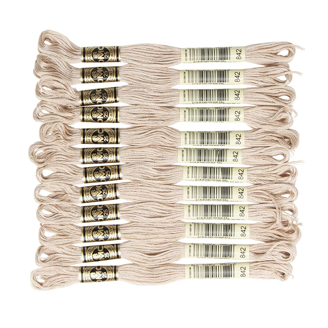 DMC 6-Strand Embroidery Cotton Floss, Very Light Beige Brown , Pack of 12 ho6162609321