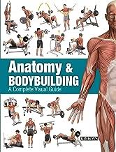 Anatomy & Bodybuilding: A Complete Visual Guide